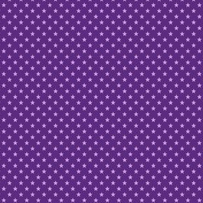 Small Purple Stars on Dark Purple