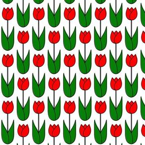 Tulip_Single_Stemmed
