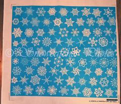 Snowcatcher Crochet Turquoise