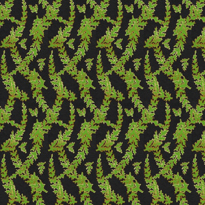 Green and Gold Ferns