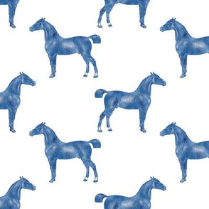 Cheval, Blue