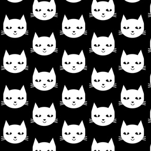 cat white black