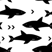 sharks attack minimal chevron black and white design