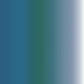 seabird_full_ombre