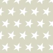 white star on tan