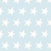 white star on light blue