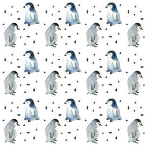 penguins baby penguins