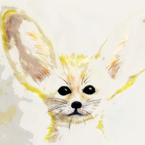 Fenex  fox