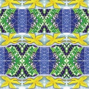 Starfish Fern