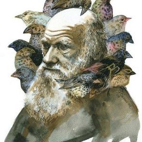 Charles Darwin & Galapagos Finches