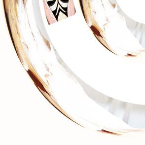 Circle_Shell