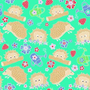 Hiding Hedgehogs