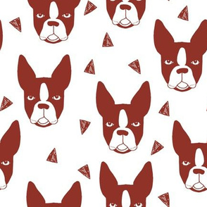 boston terriers // boston terrier cute dog red fabric dogs dog breed