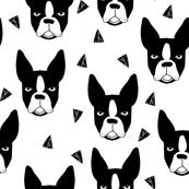 boston terrier // boston terrier dog black and white illustration