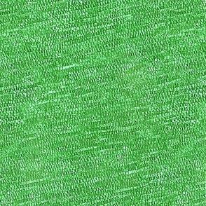 crocus cells - green