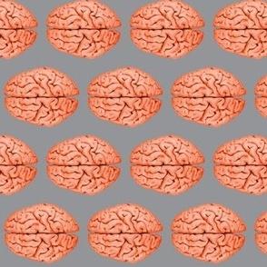 Brains grey