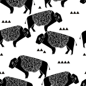 Buffalo - Black and White by Andrea Lauren