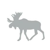 Multi Moose // Northern Lights - Grey/Mint/Navy