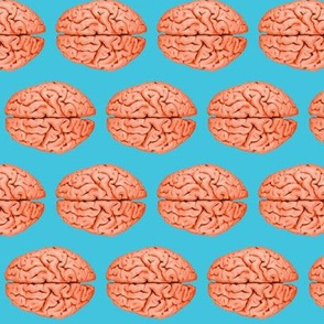 Brains Blue
