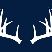 antlers // white on navy