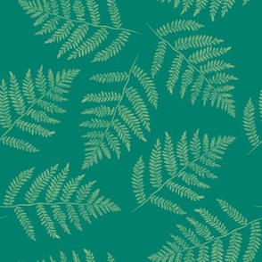 green-gold ferns