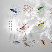 Birds Calendar 2020