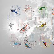 Birds Calendar 2019