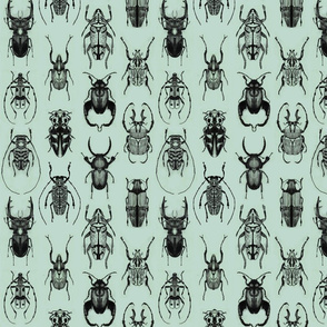 Pencil Beetles Seafoam