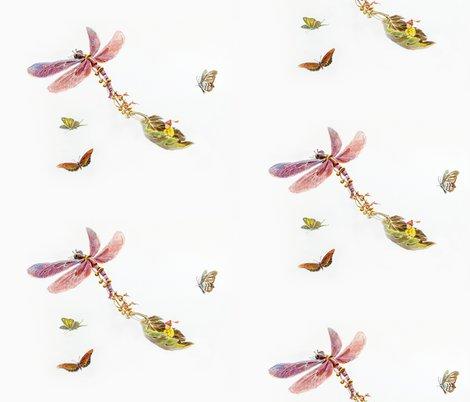 Rjenoiserie_dragonfly_rickshaw_shop_preview