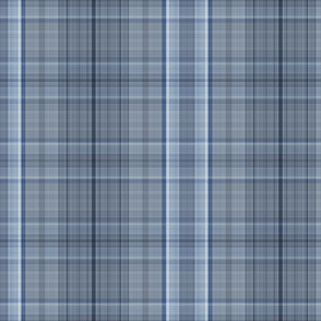 Spinal Plaid