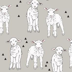 Sheep Light Grey