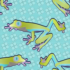 Frog (Magic Pond Coordinate)