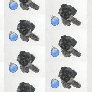 Cesky Terrier Puppy with Ornament
