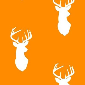 buck on orange