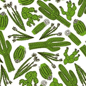Cactus Scatter (White)