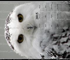 2015 Calendars - Celtic Snowy Owl