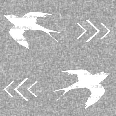 swallow bird light grey