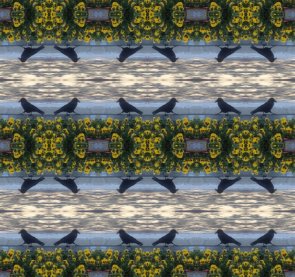 Crow walk  fabric by kjs_mom on Spoonflower - custom fabric