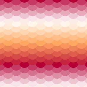 03650142 : fish scales : warm