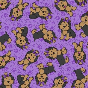 Yorkie Party (Purple)
