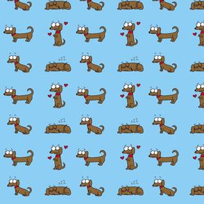 Flossie the dachshund