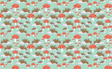Rhedgehogs___mushrooms__solvejg_j_makaretz_300-01_shop_preview
