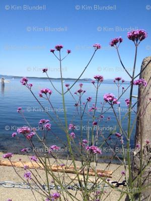 Pink flowers on the ocean