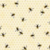 Honey, a bigger Bee Farm!
