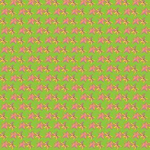 DancingStars Citrus Green