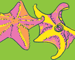 Rrlittlestarfishcyan_thumb