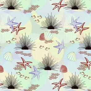Starfish,_Sea_Urchins, Fish_on_coord_3
