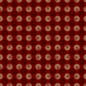 crysanthamum spice