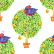 Rrpartridge_pear_tree_1_shop_thumb