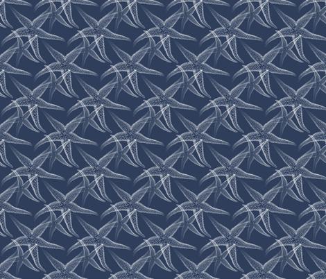 Starfish Navy Blue White Beach fabric by 13moons_design on Spoonflower - custom fabric